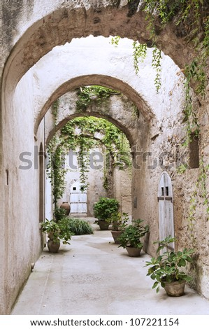 Old arcade, corridor and flowers in the pots - stock photo