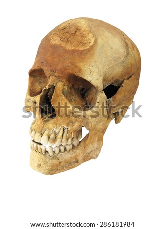 Old archaeological find human skull cranium isolated on white background