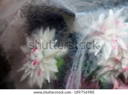 Old artificial flowers thrown away in polyethylene in the rain. - stock photo