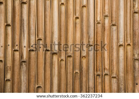 Old bamboo wall background.Bamboo pattern - stock photo