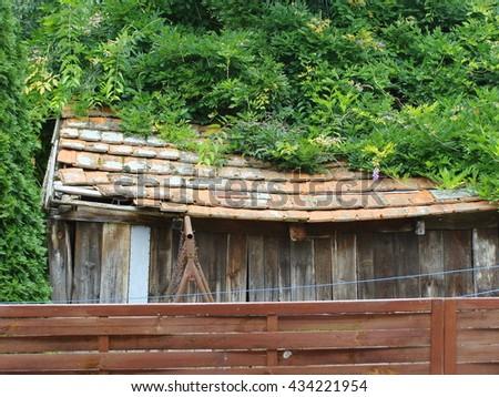 Old barn among overgrown plant - stock photo