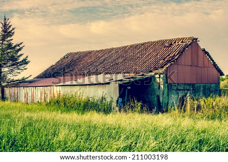 Old barn house surrounded by tall grass - stock photo