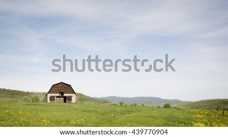 Old Barn in a Meadow in Steamboat Springs, Colorado