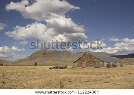 Old barn in a very large field - Loyalton California USA