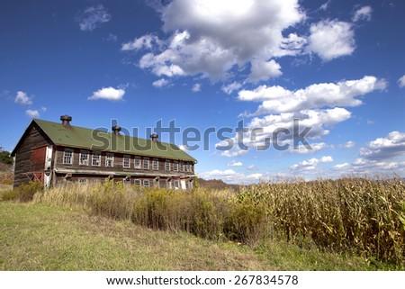 Old barn in the corn field, Pennsylvania,USA - stock photo