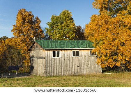 Old Barn with green roof, surrounded in autumn foliage and a pony