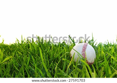 Old baseball in dewy grass, with white background.