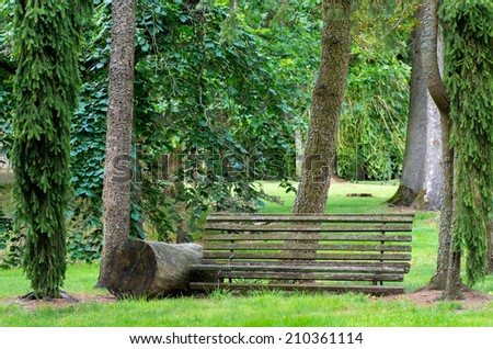 Old bench pictured among large trees in back