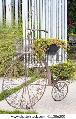 Old bicycle and flower in basket for decoration