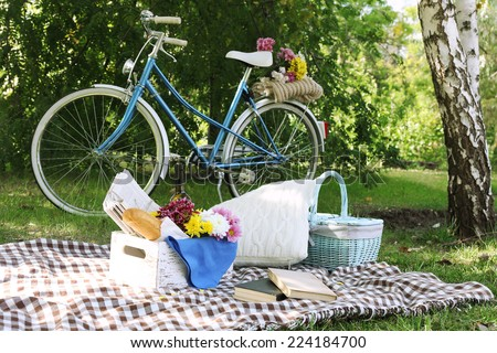 Old bicycle and picnic snack on checkered blanket on grass in park - stock photo
