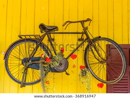 Old bicycle hang on yellow wooden wall.