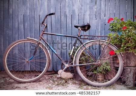 Old  bicycle near a old  blue wooden fence in village and flowers on stubs