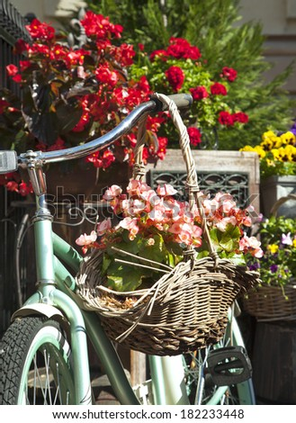 Old bicycle with a bucket of colorful flowers