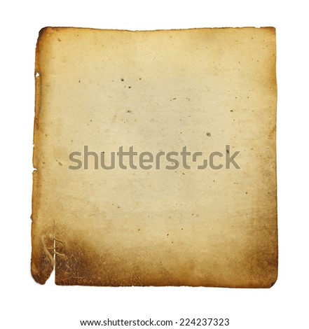 Old Blank Vellum Paper Isolated on White Background.