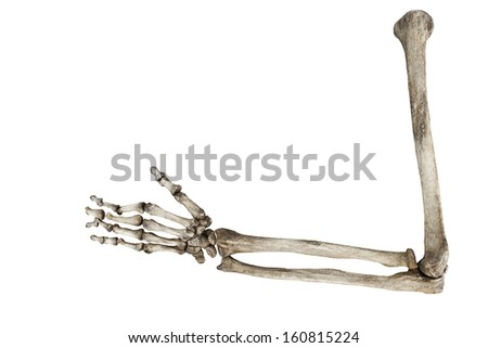 old bones of the human hand isolated on white background  - stock photo