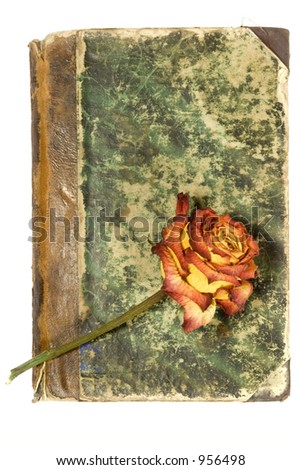 old book cover & rose - stock photo