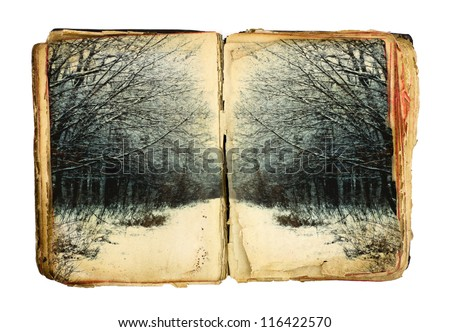 Old book with winter forest on white background - stock photo