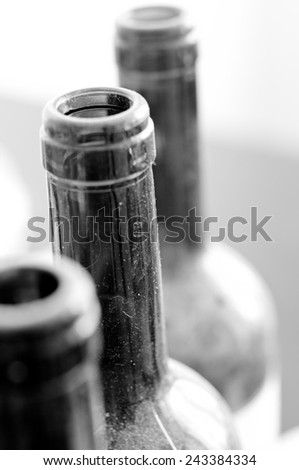 Old bottles of wine - stock photo