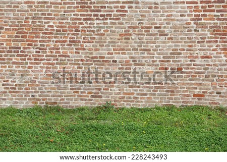 Old Brick Wall and Green Grass