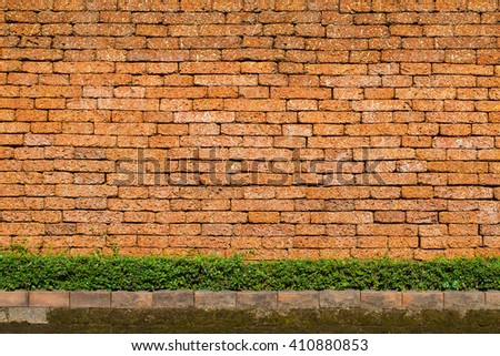 Old brick wall background with bushes and weeds