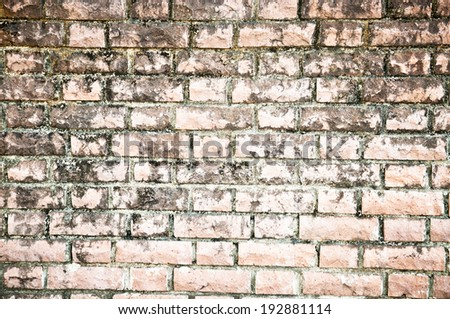 Old Brick Wall for Background Wallpaper and Texture.