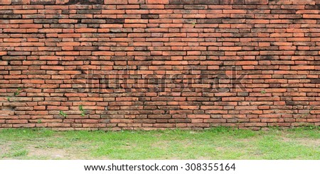 old brick wall texture with the plant