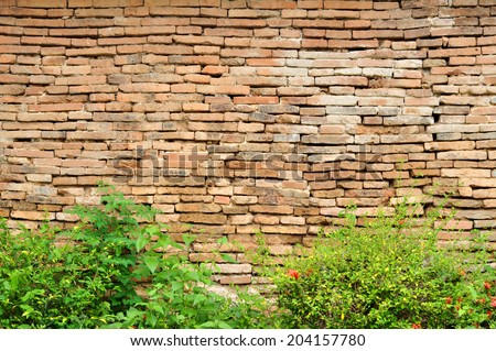 Old brick walls and bushes in front. - stock photo
