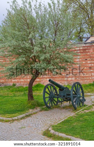 Old canon - stock photo