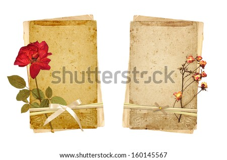 Old cards and dried rose. Collection for scrapbooking design. Isolated on white background
