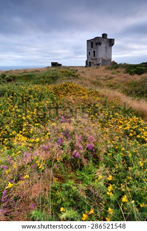Old castle ruins on clifs in Crookhaven, County Cork, Ireland - stock photo