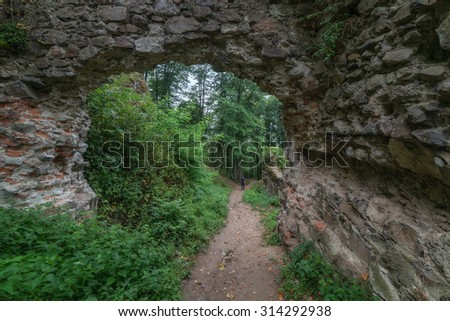 old castle ruins on green thick forest