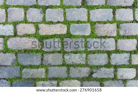 Old cobblestone background with grass - stock photo