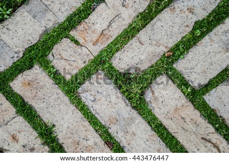 Old Cobblestone Background With Grass / Brick With Grass / Tiles With Grass  / Stone Way