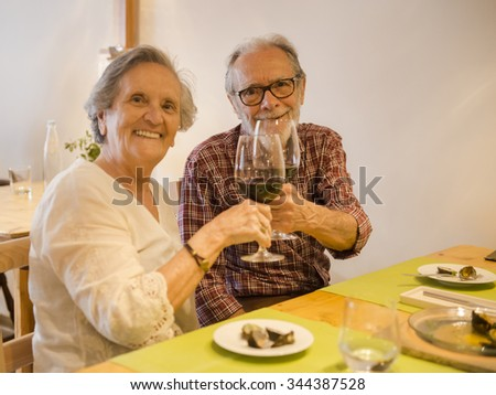 Old couple toasting and looking happy at a restaurant - stock photo