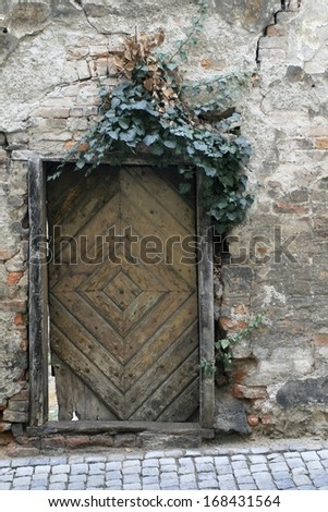 Old crumbling wooden door with weathered brick wall covered with ivy. - stock photo