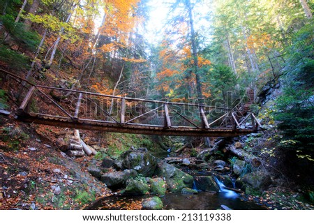 old decorative wooden bridge in colorful autumn forest