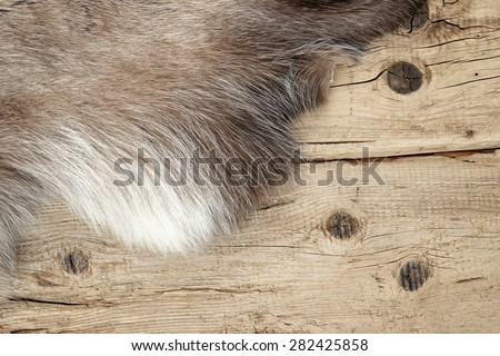Old dilapidated boards and reindeer fur - stock photo