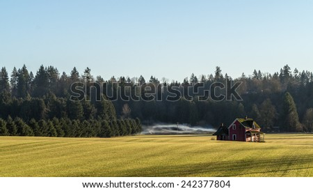 Old dilapidated house in a nicely moved grass field in the Fraser Valley of British Columbia - stock photo