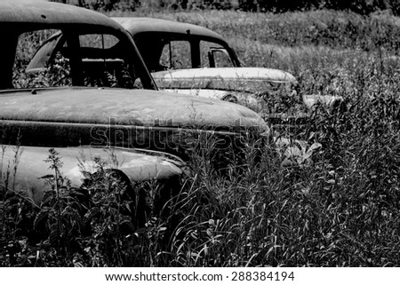 Old, dirty and rusty cars in the tall grass - stock photo