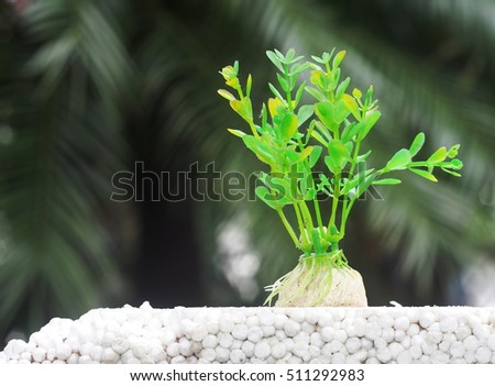 old dirty artificial fake imitated green plant plastic for aquarium decoration on white polyurethane foam block outdoor with real green natural environment blur in background for concept presentation