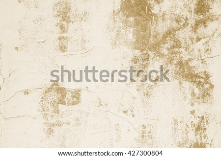 Old dirty white wall white cream color with moss, fungus texture background, wall vintage color tone concept. wall sepia color tone concept. Old dirty paper sepia color tone