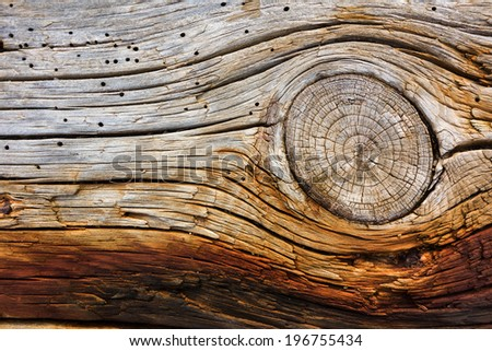 Old dry grained wood with knots, cracks and rust marks. - stock photo