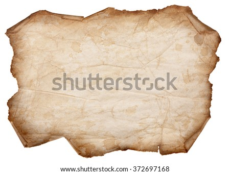Old, Dry Paper With Torn Edges Curled Isolated on a White Background - stock photo