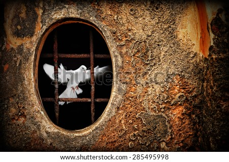Old dungeon and white dove as symbol of freedom illustration - stock photo