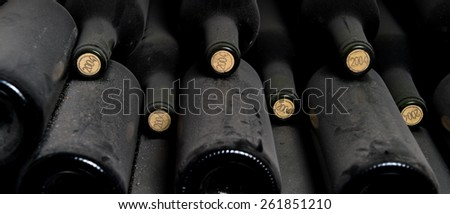 Old dusty wine bottles rest in the cellar - stock photo