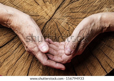 old elderly hands and old tree