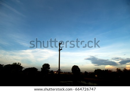 old electricity tower with dark tree and blue sky background