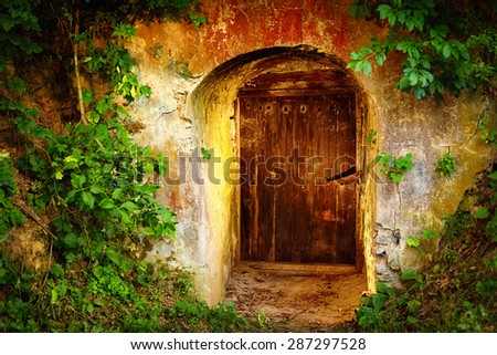 old entrance door in forest. Wine cellar - stock photo