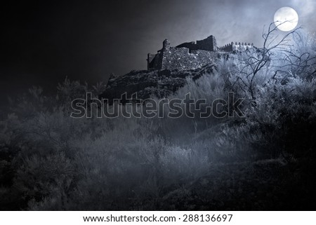 Old european castle in a foggy full moon night