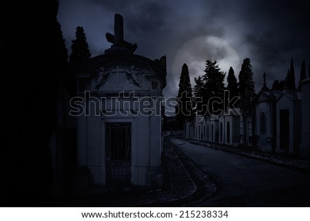 Old European cemetery in a cloudy full moon night - stock photo